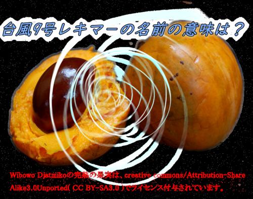 台風9号,レキマー,2019,名前,由来,意味,語源