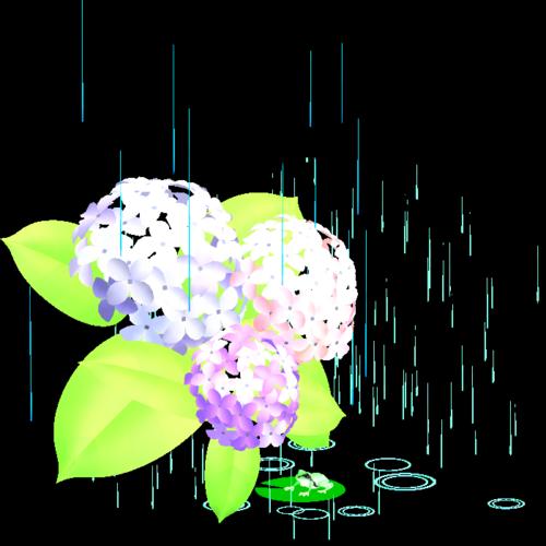 梅雨入り,九州北部,四国,中国,近畿,東海,いつ,2019年